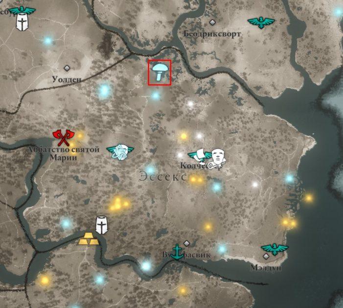 Мухоморы в Эссексе на карте Assassin's Creed: Valhalla