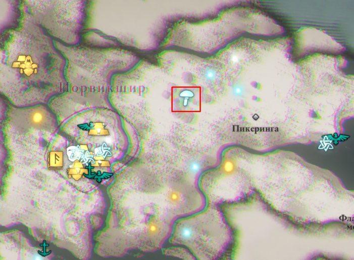 Мухоморы в Йорвикшире на карте Assassin's Creed: Valhalla