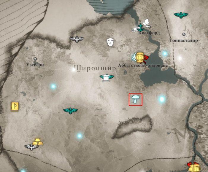 Мухоморы в Широпшире на карте Assassin's Creed: Valhalla